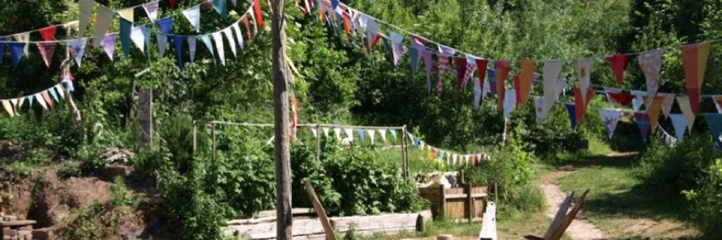 bunting at boiling wells