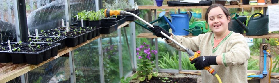 Adult watering plants inside a greenhouse