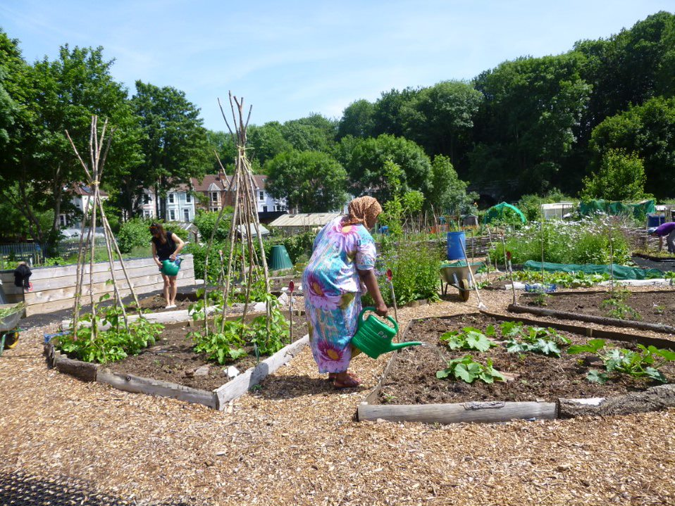 Lady watering community garden at the Propagation Place